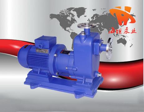 ZCQ型ci力自吸泵