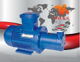 磁力驱动旋涡泵CWB型