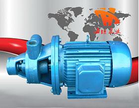 铸铁单级旋涡泵1W型