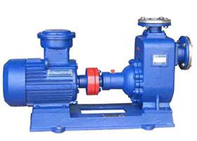CYZ-A型不锈钢防爆自xi泵