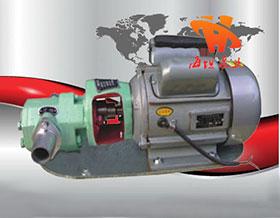 不锈钢防爆微型齿轮油泵WCB型